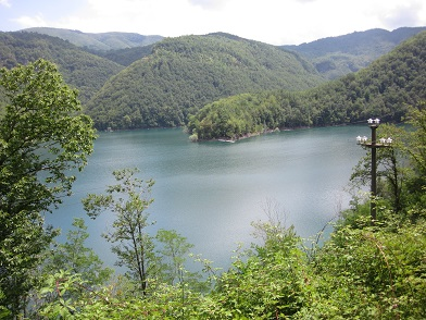 a lago